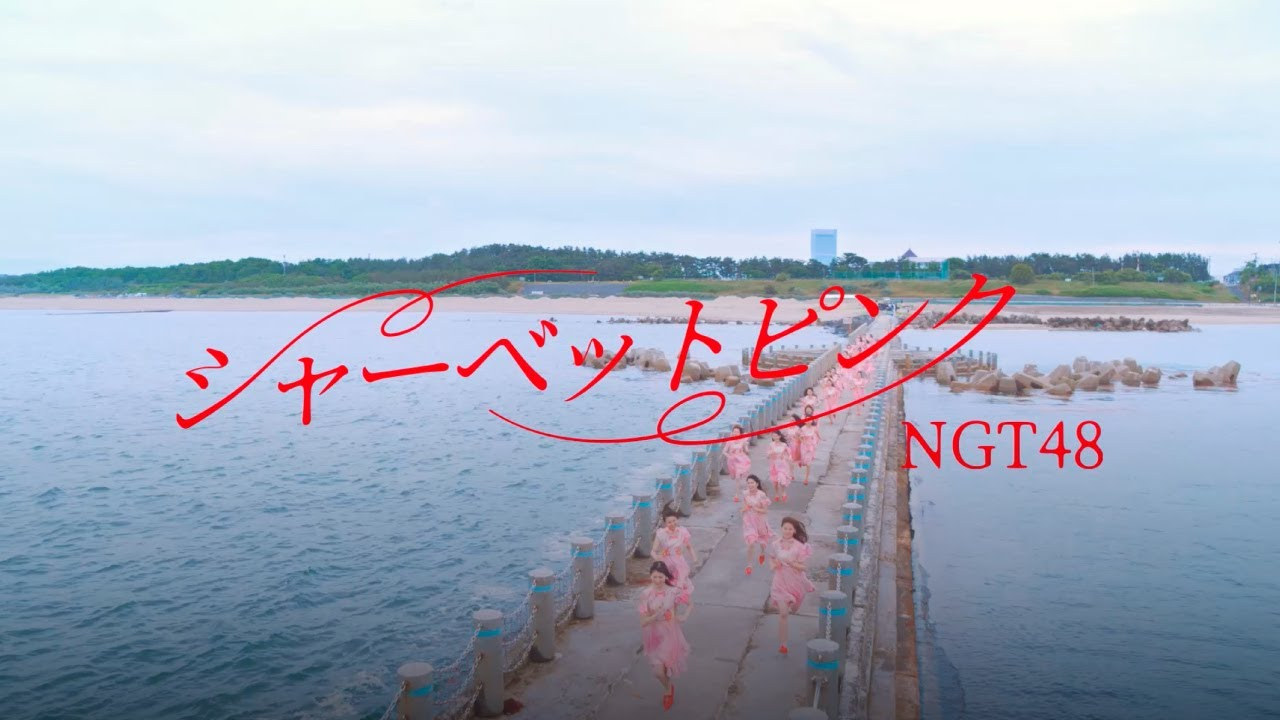 NGT48「シャーベットピンク」 ファンの皆さんを表現した振付